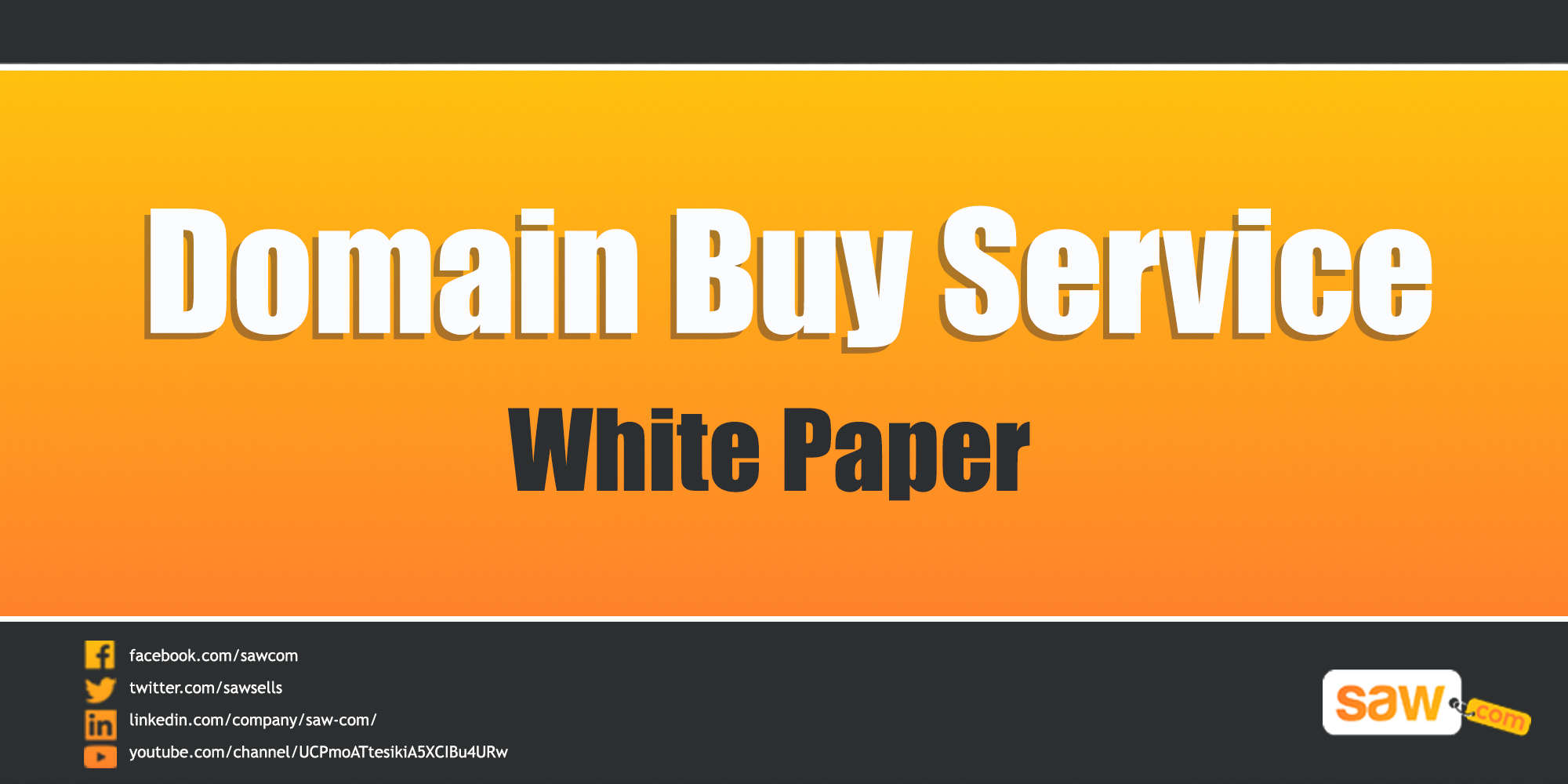 Domain Buy Service White Paper
