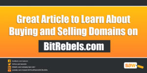 How To Make Money Buying and Selling Domain Names