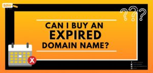 Can I Buy an Expired Domain?