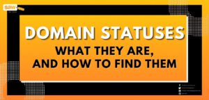 Domain Statuses – What They Are, and How to Find Them